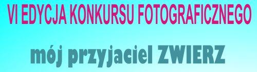 Kopia_zapasowa_dyplom zwierz.JPG