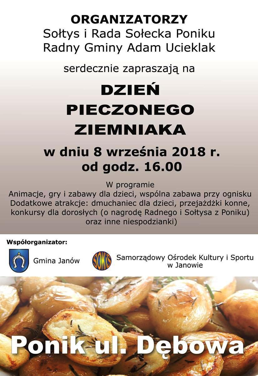 ziemniak (Copy).jpg
